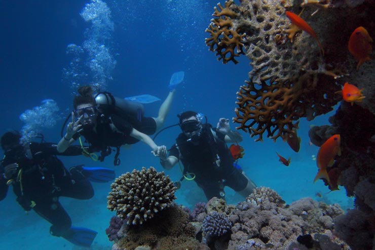 Dive Sites in Bali